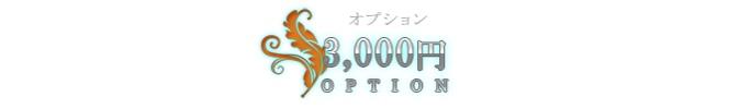 3000円オプション