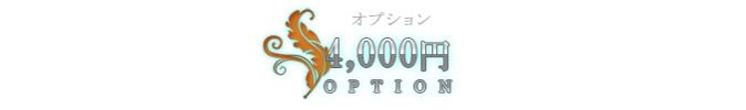 4000円オプション