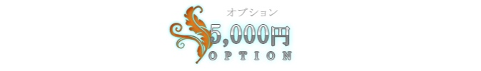 5000円オプション